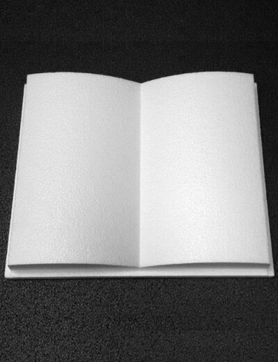 libro-polistirolo